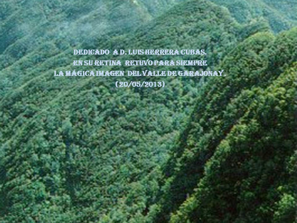 Dedicado a d. LUIS HERRERA CUBAS. EN SU RETINA retuvo para siempre