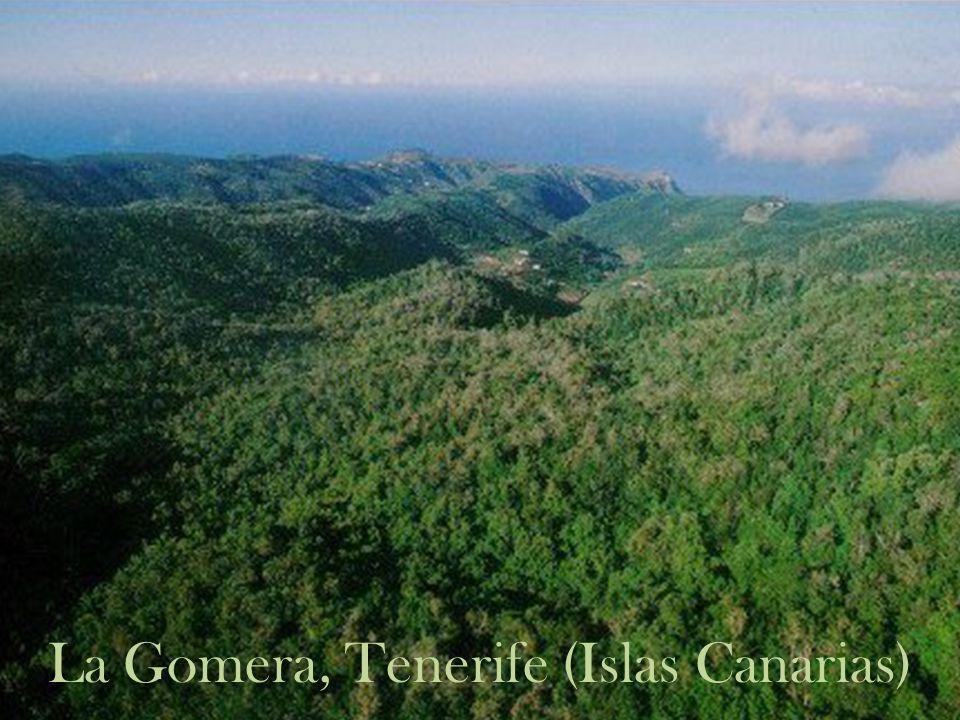 La Gomera, Tenerife (Islas Canarias)