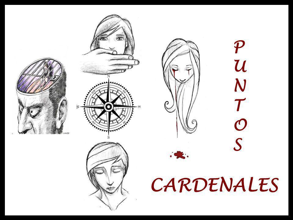 PUNTOS CARDENALES P U N T O S CARDENALES