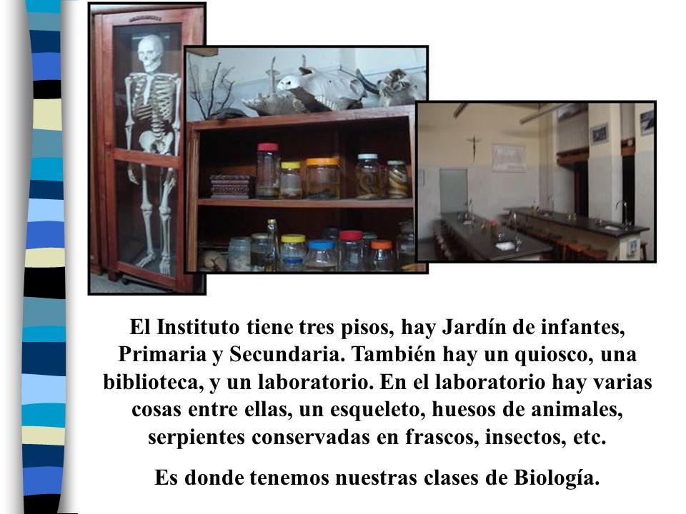Es donde tenemos nuestras clases de Biología.