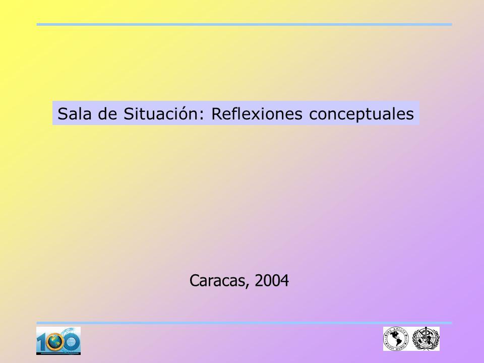 Sala de Situación: Reflexiones conceptuales