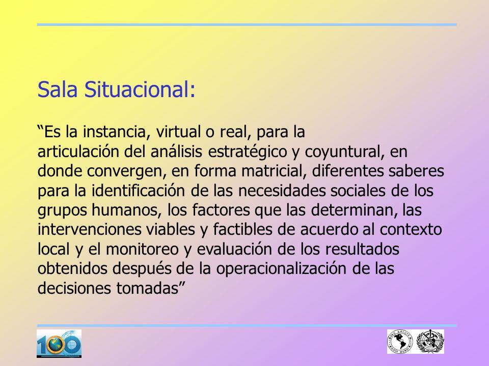 Sala Situacional: Es la instancia, virtual o real, para la