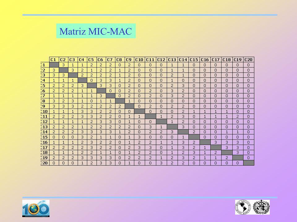 Matriz MIC-MAC