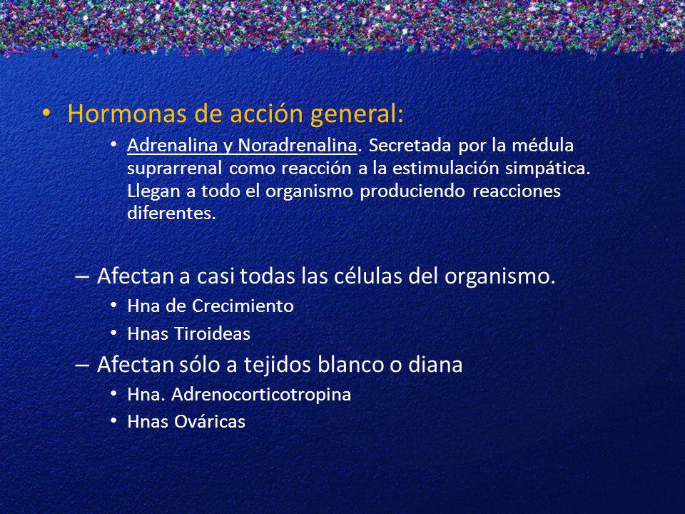 Hormonas de acción general: