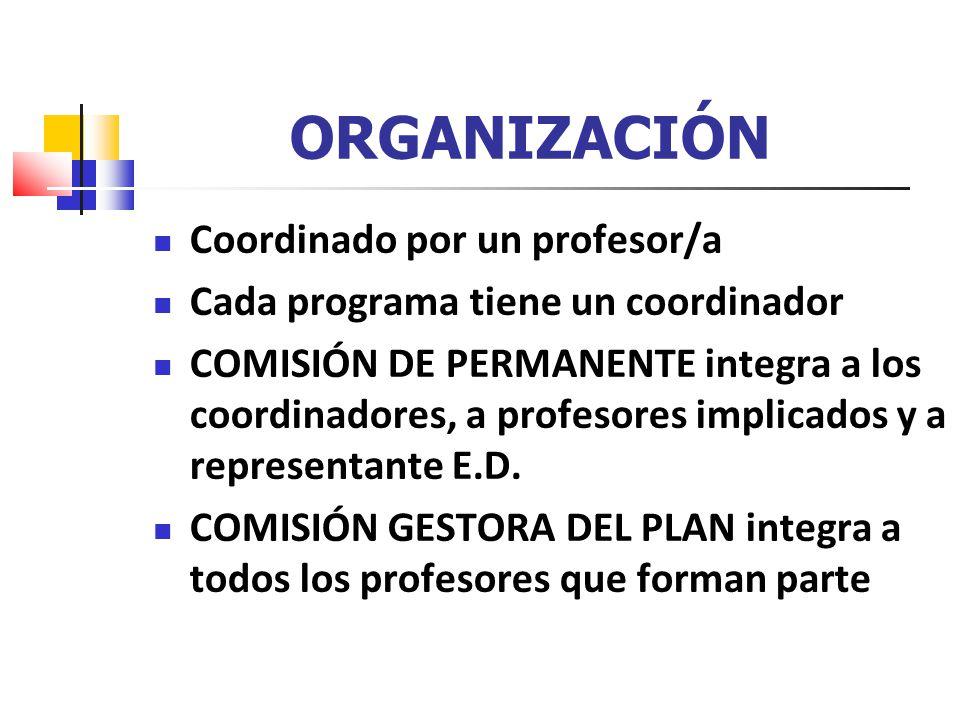 ORGANIZACIÓN Coordinado por un profesor/a