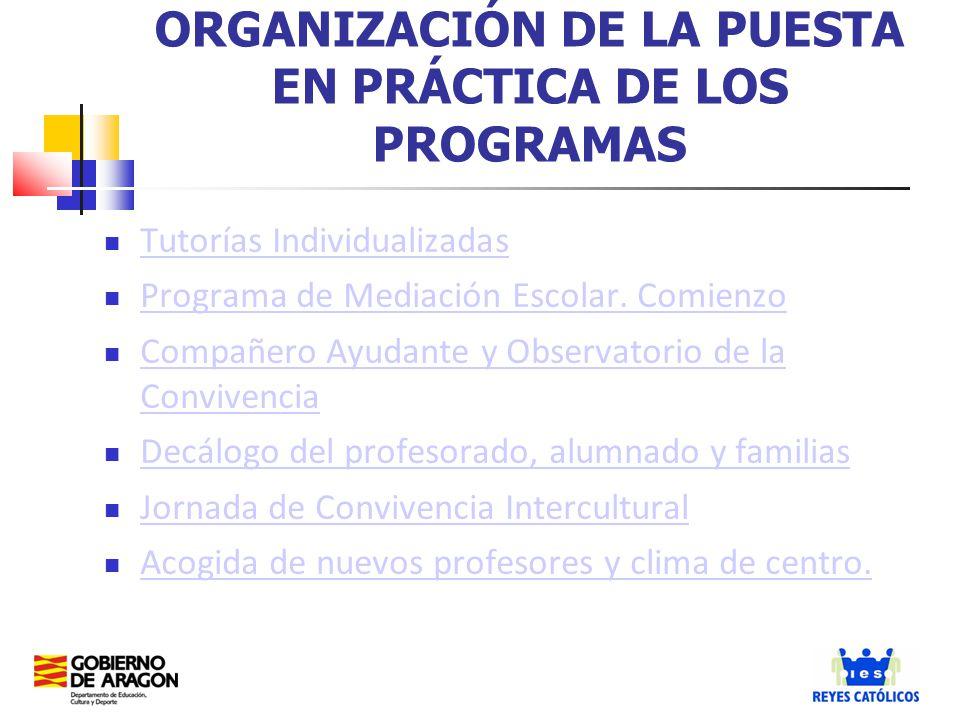 ORGANIZACIÓN DE LA PUESTA EN PRÁCTICA DE LOS PROGRAMAS