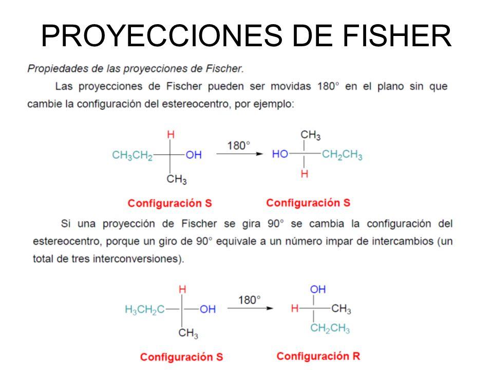 PROYECCIONES DE FISHER