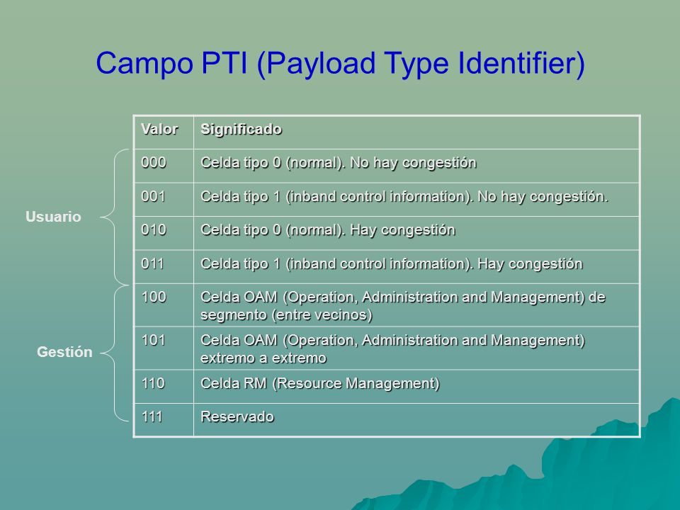 Campo PTI (Payload Type Identifier)