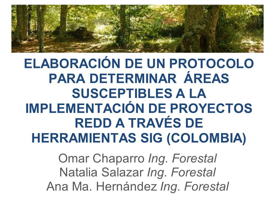 ELABORACIÓN DE UN PROTOCOLO PARA DETERMINAR ÁREAS SUSCEPTIBLES A LA IMPLEMENTACIÓN DE PROYECTOS REDD A TRAVÉS DE HERRAMIENTAS SIG (COLOMBIA)