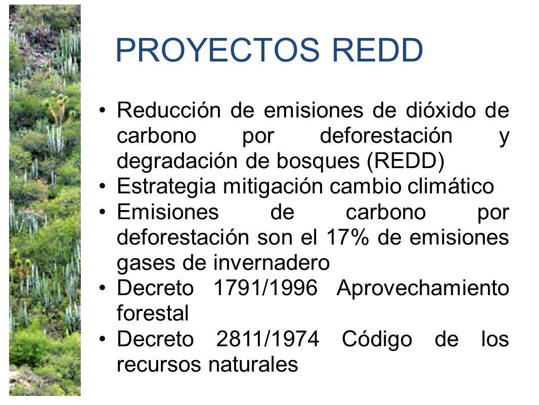 PROYECTOS REDD Reducción de emisiones de dióxido de carbono por deforestación y degradación de bosques (REDD)