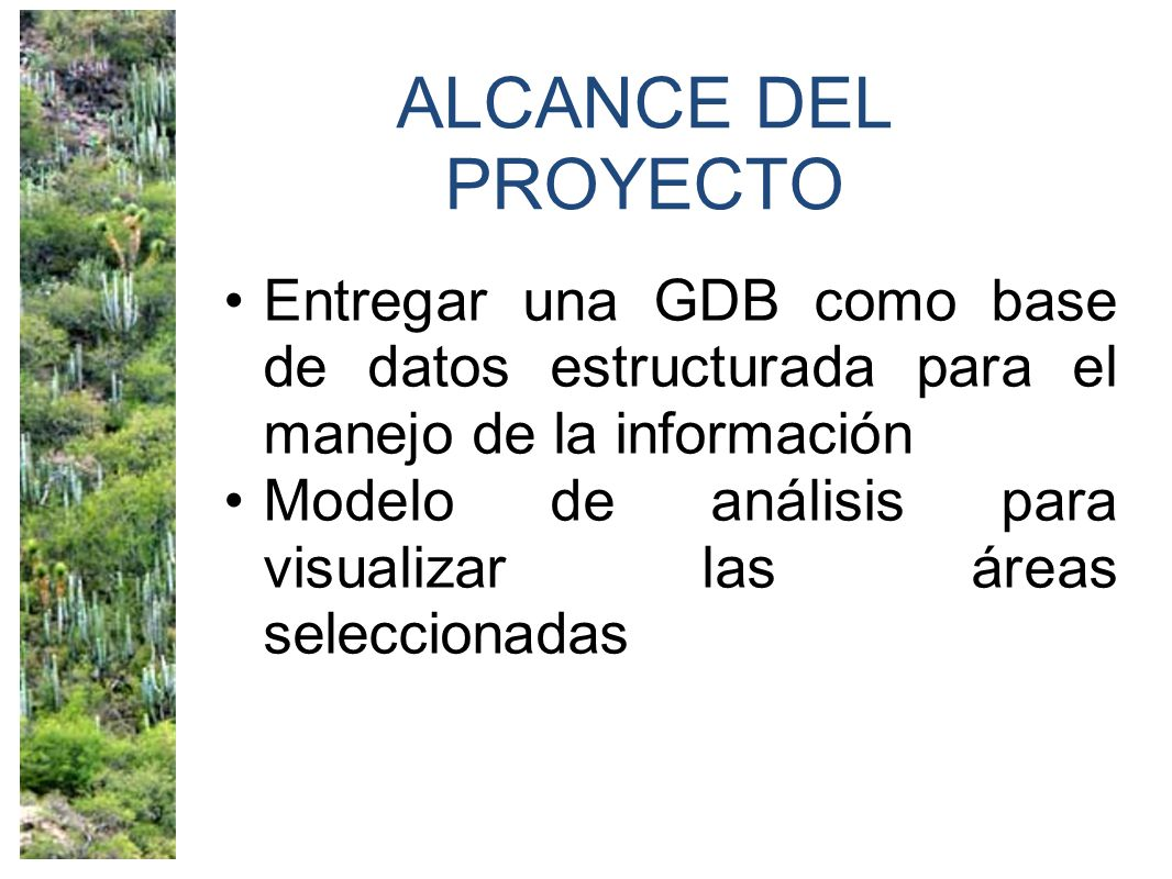 ALCANCE DEL PROYECTO Entregar una GDB como base de datos estructurada para el manejo de la información.