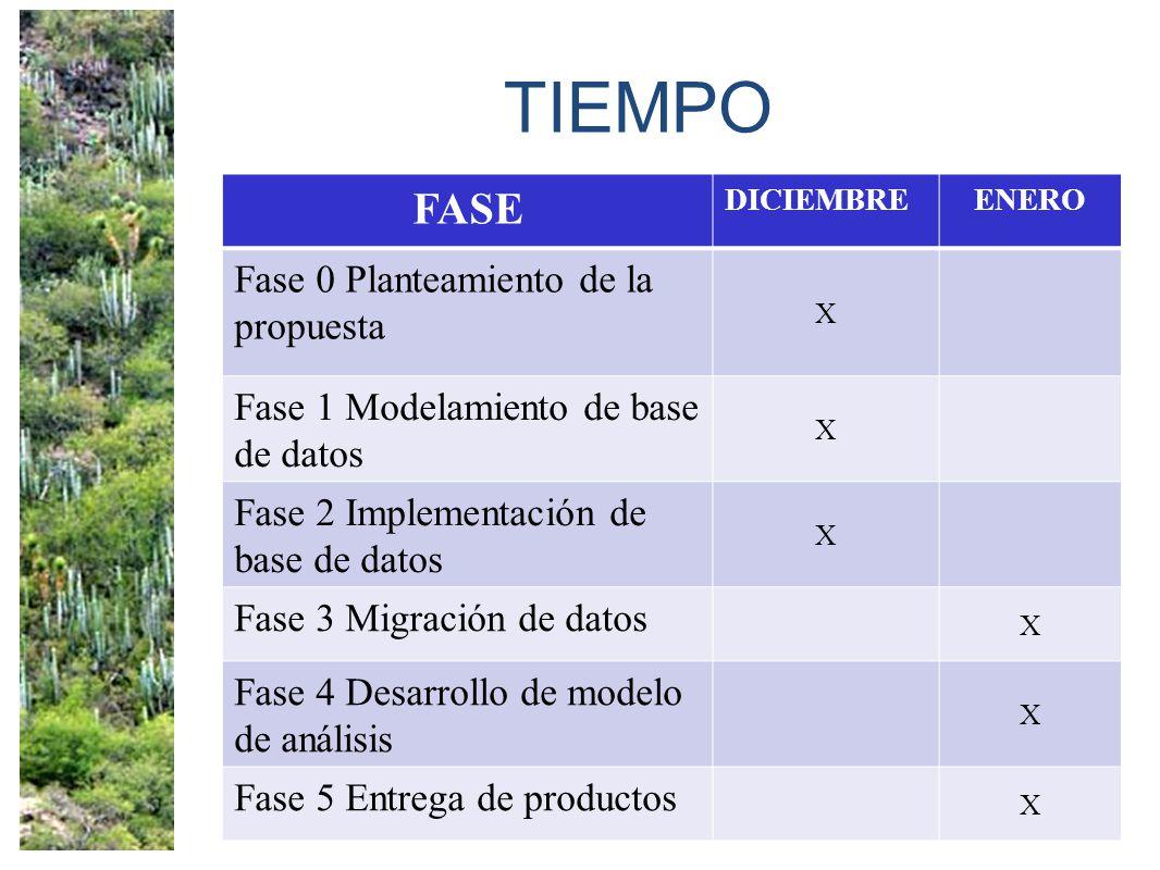 TIEMPO FASE Fase 0 Planteamiento de la propuesta