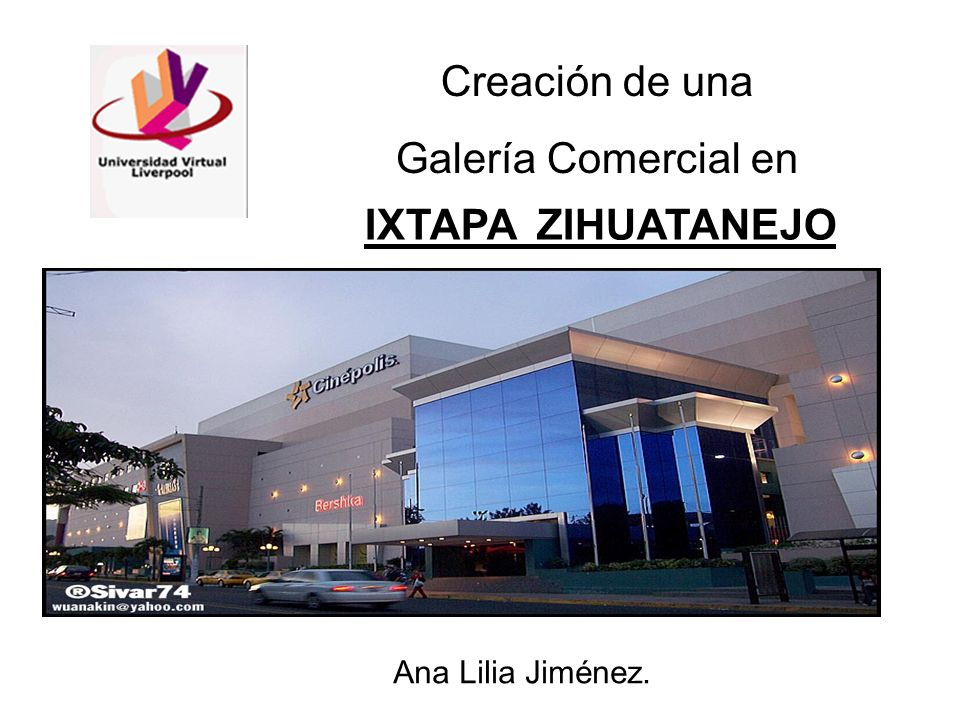 Creación de una Galería Comercial en IXTAPA ZIHUATANEJO