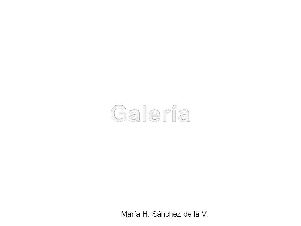 Galería María H. Sánchez de la V.