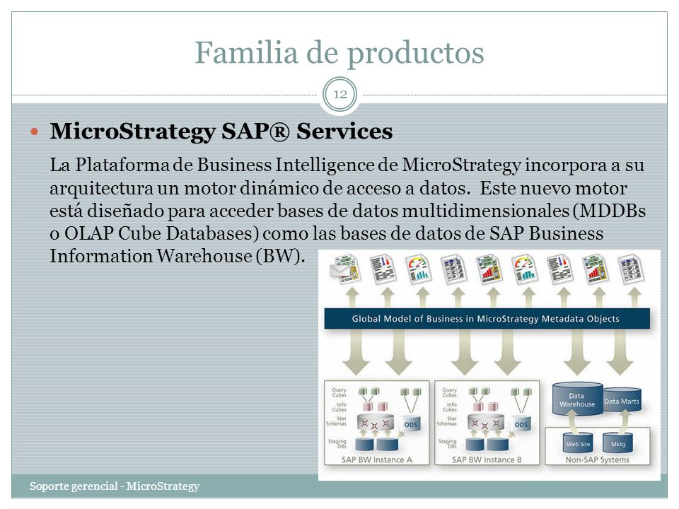 Familia de productos MicroStrategy SAP® Services