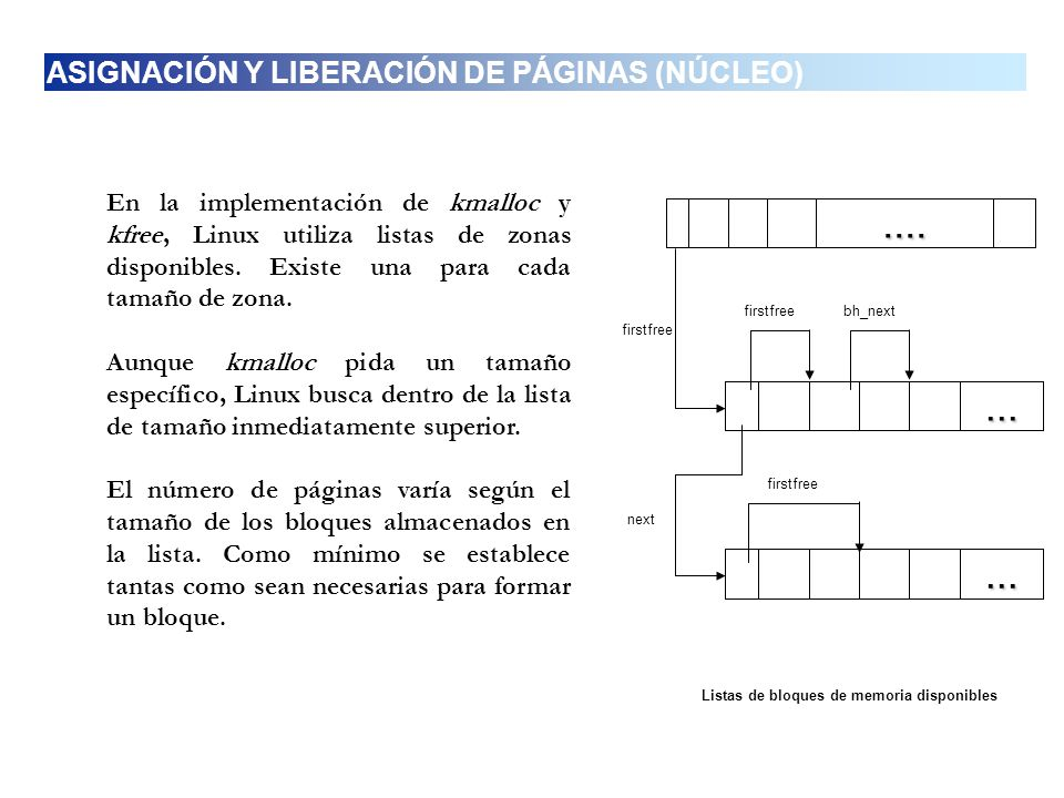 .... ... ... ASIGNACIÓN Y LIBERACIÓN DE PÁGINAS (NÚCLEO)