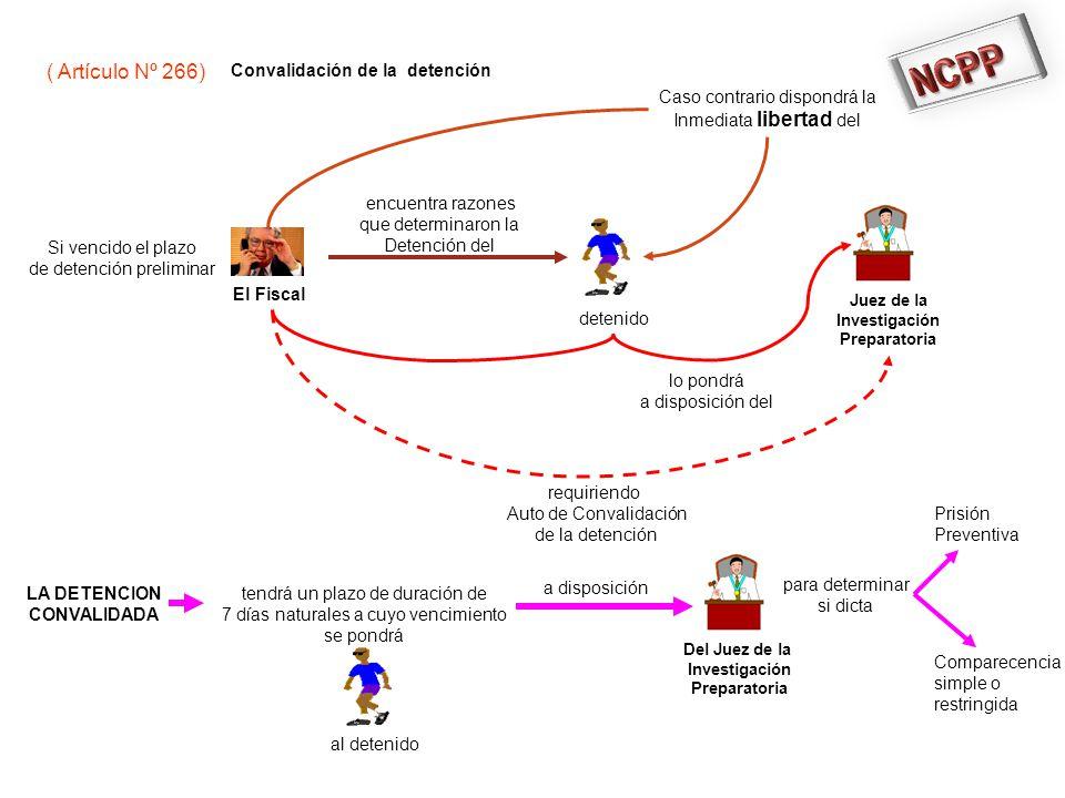 NCPP ( Artículo Nº 266) Convalidación de la detención