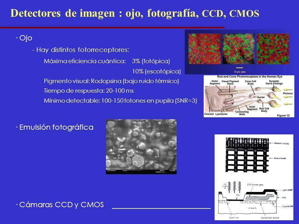 Detectores de imagen : ojo, fotografía, CCD, CMOS