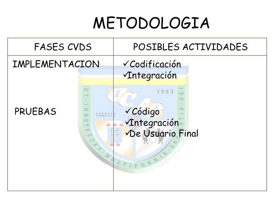METODOLOGIA FASES CVDS POSIBLES ACTIVIDADES IMPLEMENTACION
