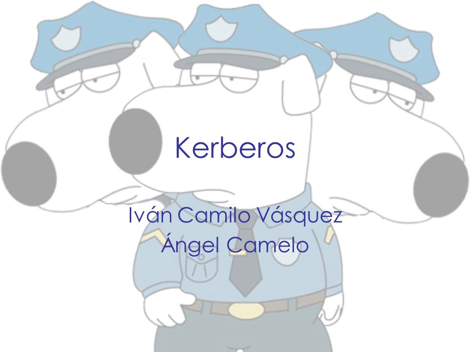 Iván Camilo Vásquez Ángel Camelo