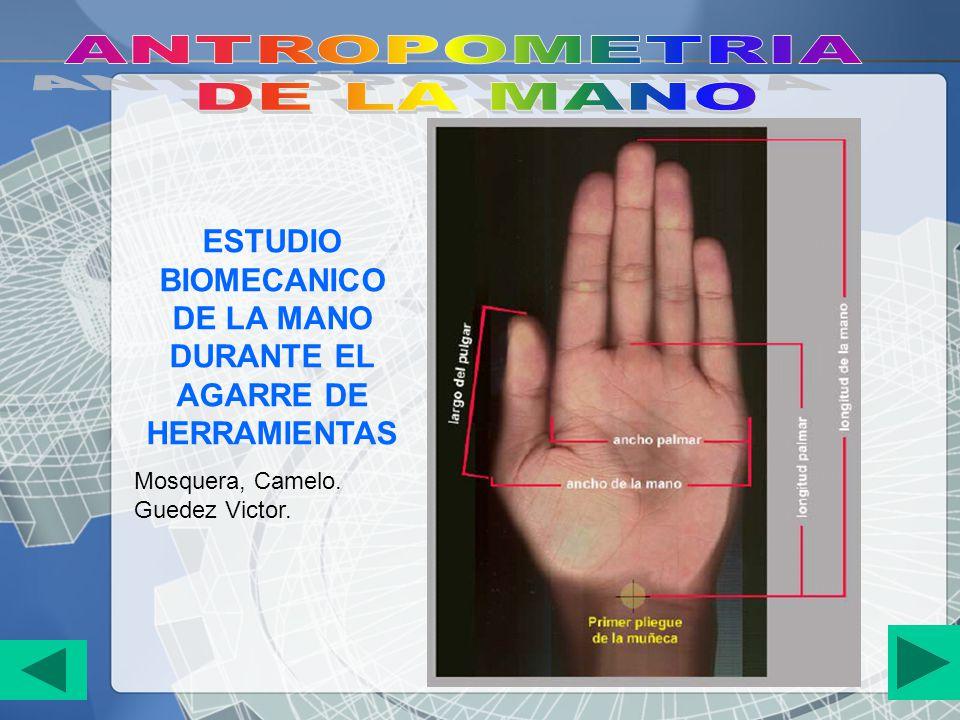 ESTUDIO BIOMECANICO DE LA MANO DURANTE EL AGARRE DE HERRAMIENTAS