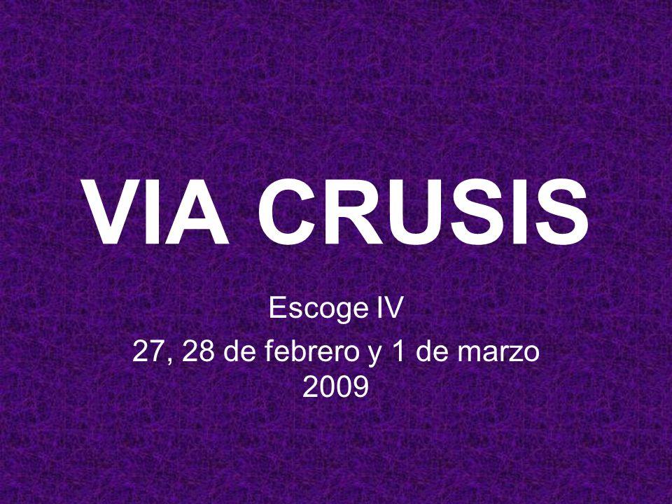 Escoge IV 27, 28 de febrero y 1 de marzo 2009