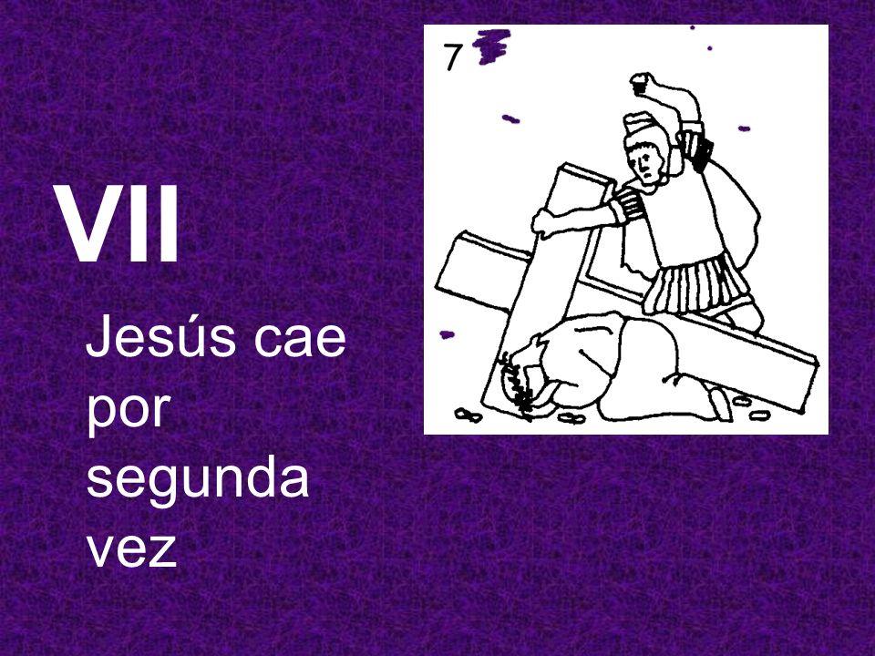 VII Jesús cae por segunda vez