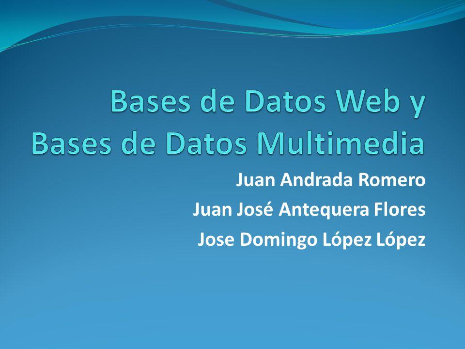 Bases de Datos Web y Bases de Datos Multimedia