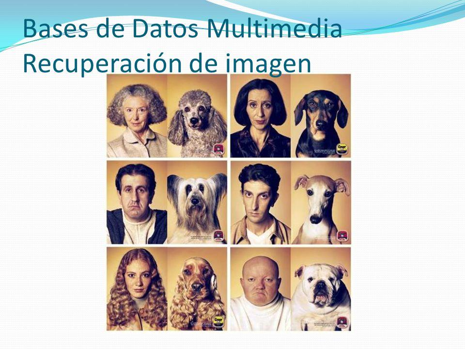 Bases de Datos Multimedia Recuperación de imagen
