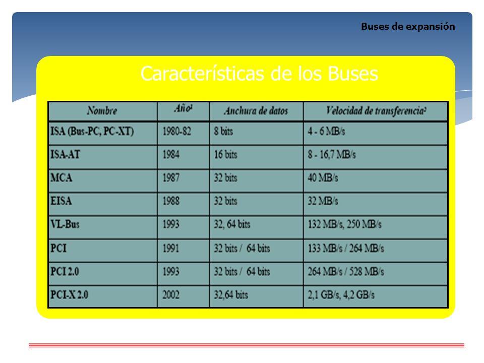 Características de los Buses
