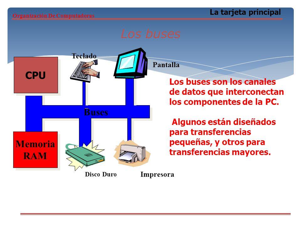 Los buses CPU Buses Memoria RAM