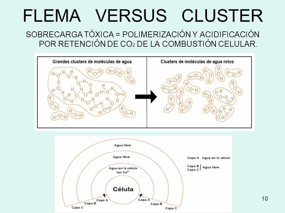 FLEMA VERSUS CLUSTER SOBRECARGA TÓXICA = POLIMERIZACIÓN Y ACIDIFICACIÓN POR RETENCIÓN DE CO2 DE LA COMBUSTIÓN CELULAR.