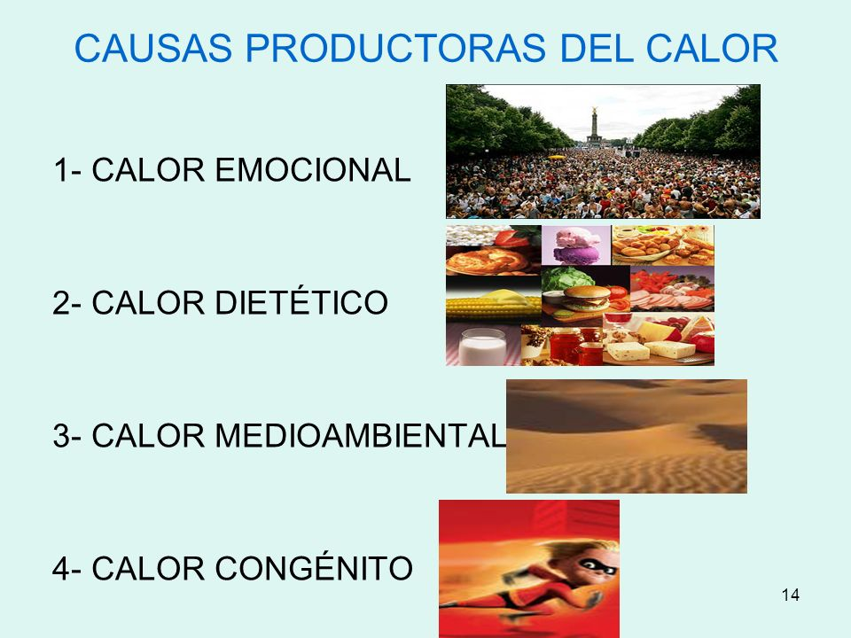 CAUSAS PRODUCTORAS DEL CALOR