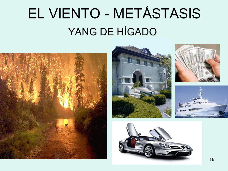 EL VIENTO - METÁSTASIS YANG DE HÍGADO