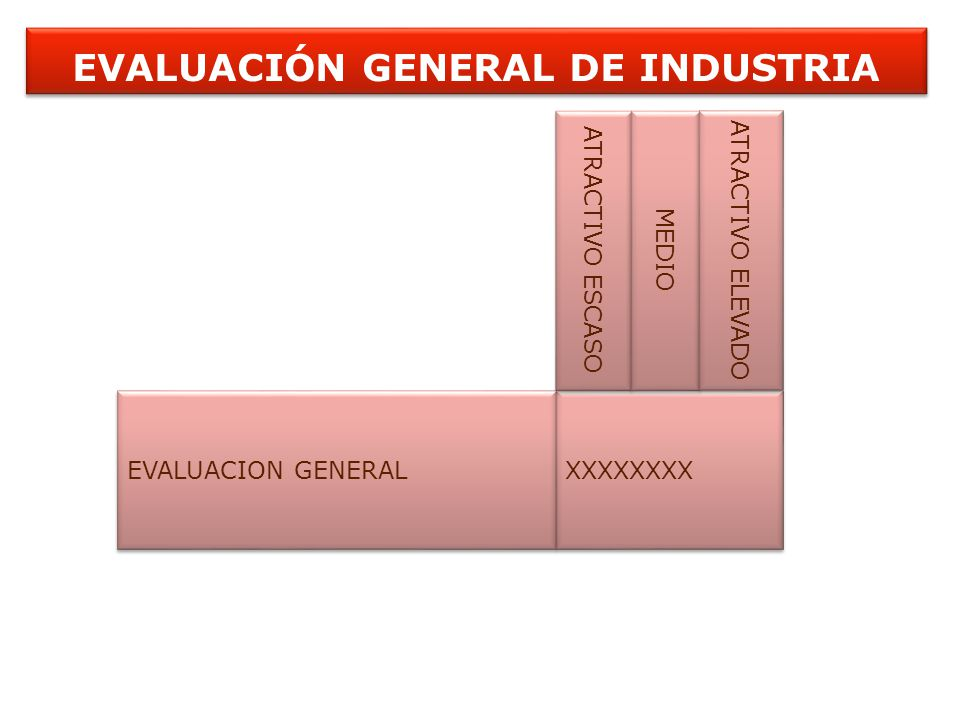 EVALUACIÓN GENERAL DE INDUSTRIA