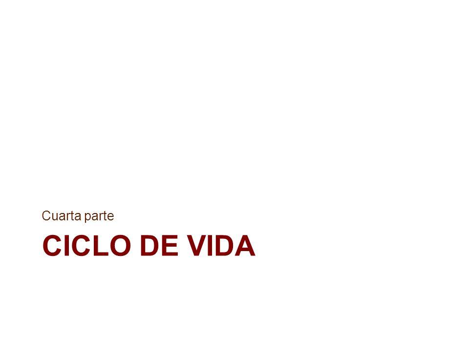 Cuarta parte CICLO DE VIDA