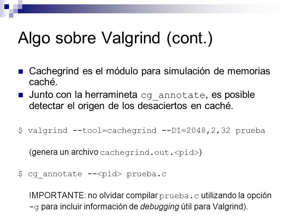 Algo sobre Valgrind (cont.)