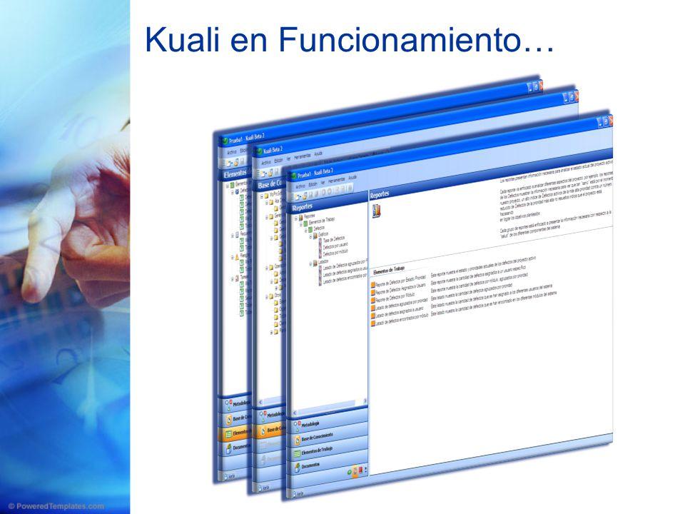 Kuali en Funcionamiento…