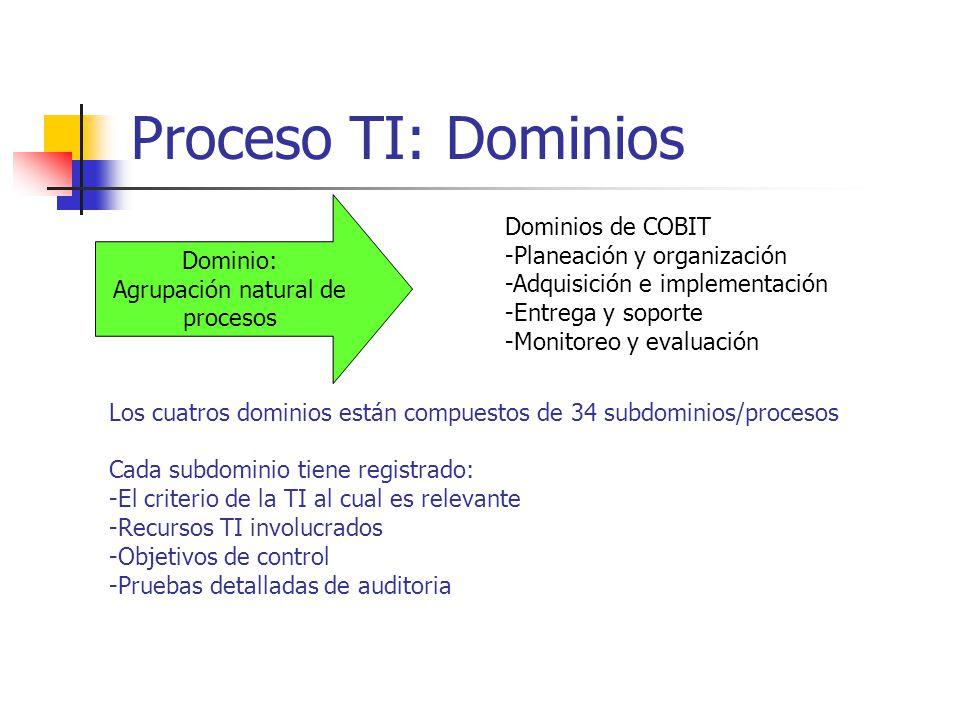 Proceso TI: Dominios Dominios de COBIT Dominio: