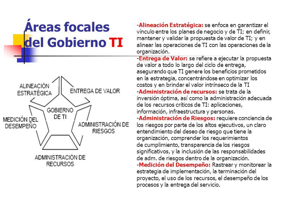 Áreas focales del Gobierno TI