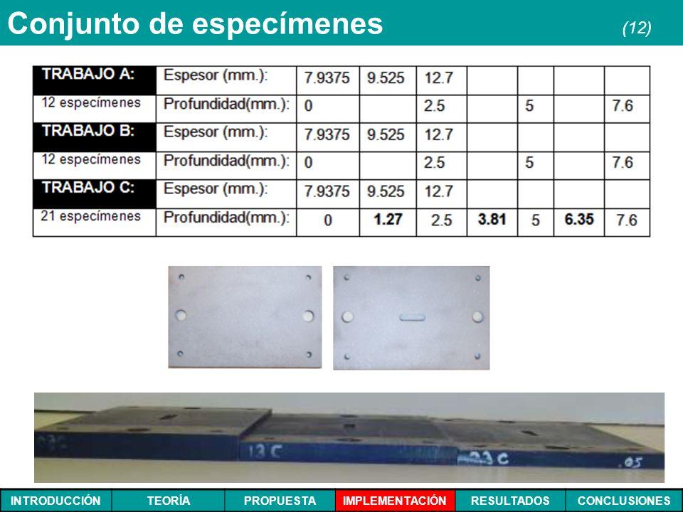 Conjunto de especímenes (12)