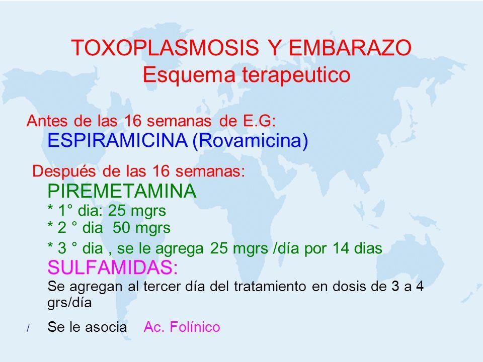 TOXOPLASMOSIS Y EMBARAZO Esquema terapeutico