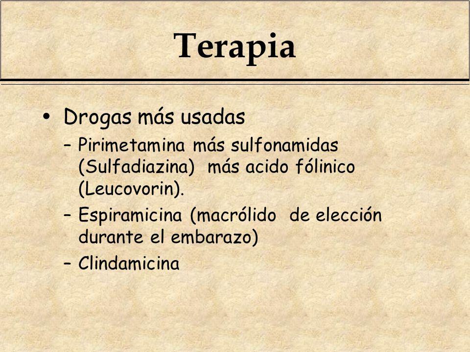 Terapia Drogas más usadas