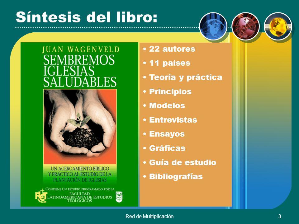 Síntesis del libro: 22 autores 11 países Teoría y práctica Principios