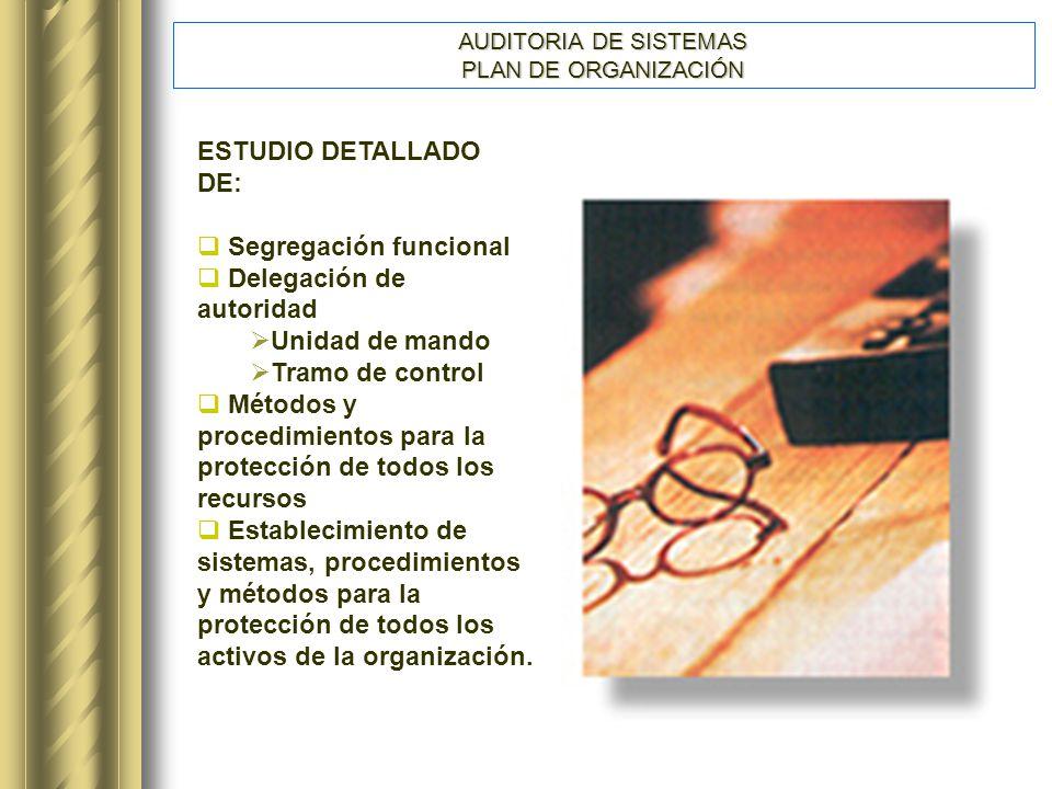 AUDITORIA DE SISTEMAS PLAN DE ORGANIZACIÓN