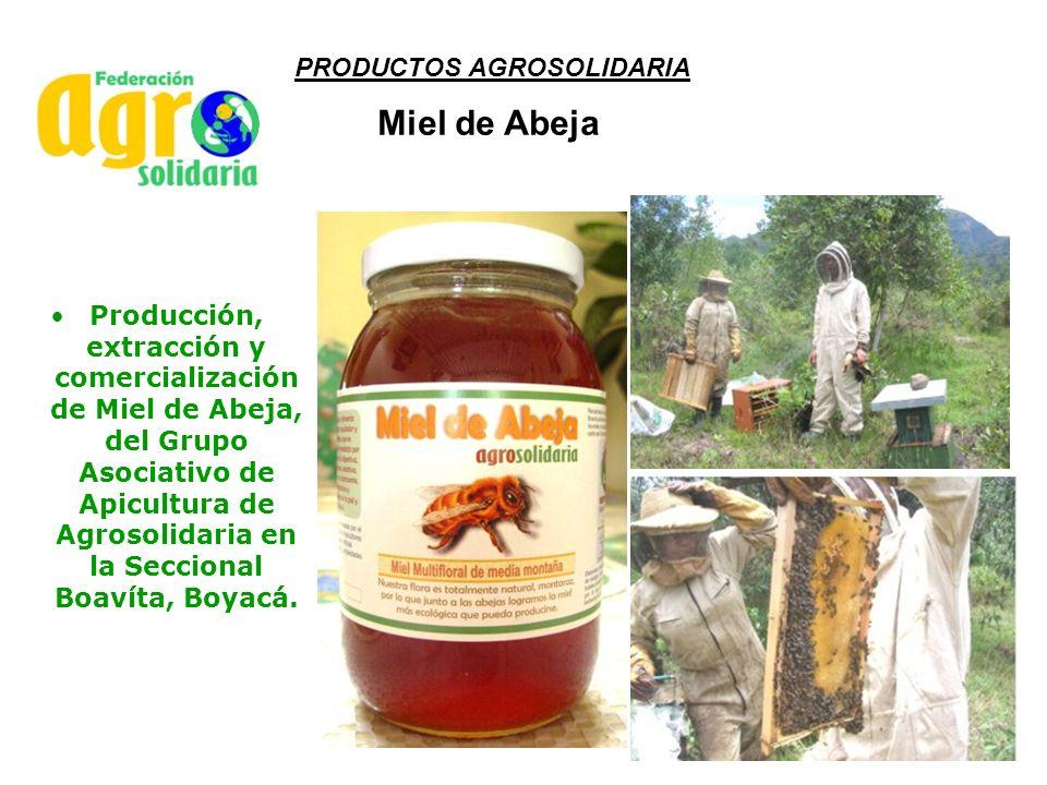 Miel de Abeja PRODUCTOS AGROSOLIDARIA
