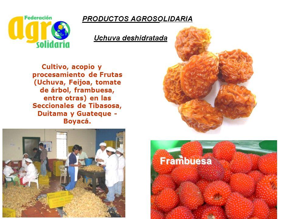 Frambuesa PRODUCTOS AGROSOLIDARIA Uchuva deshidratada