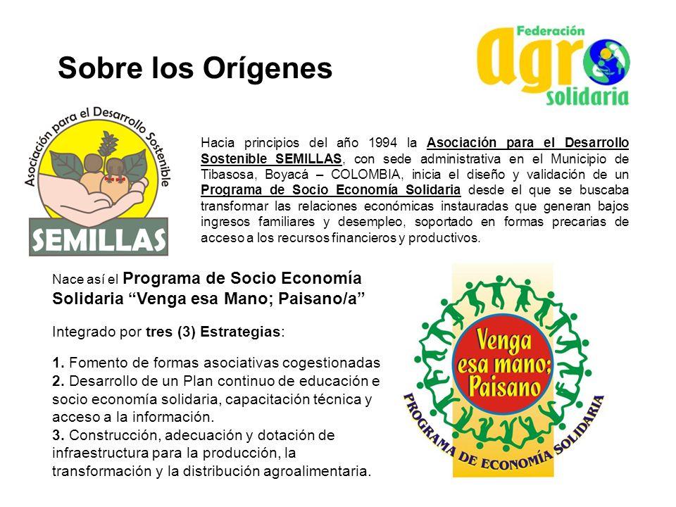 Sobre los Orígenes Integrado por tres (3) Estrategias: