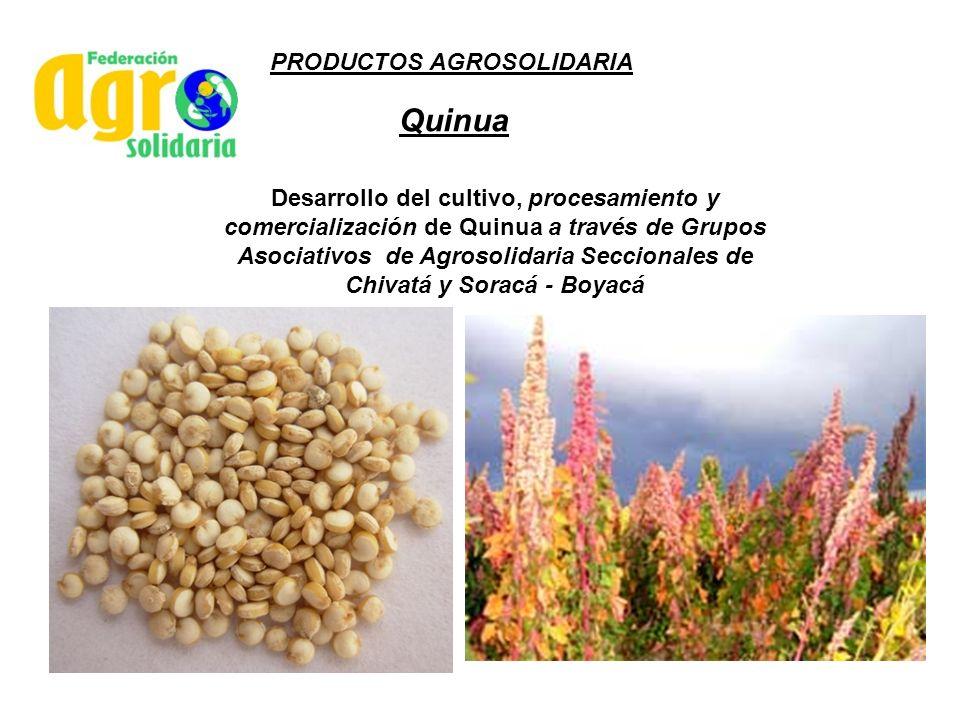 Quinua PRODUCTOS AGROSOLIDARIA