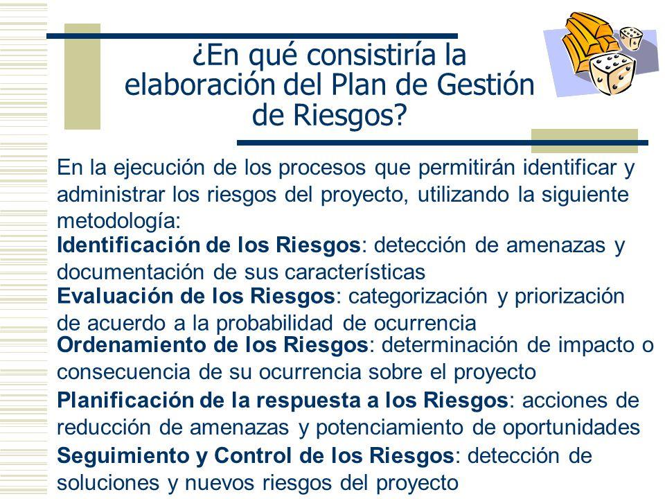 ¿En qué consistiría la elaboración del Plan de Gestión de Riesgos